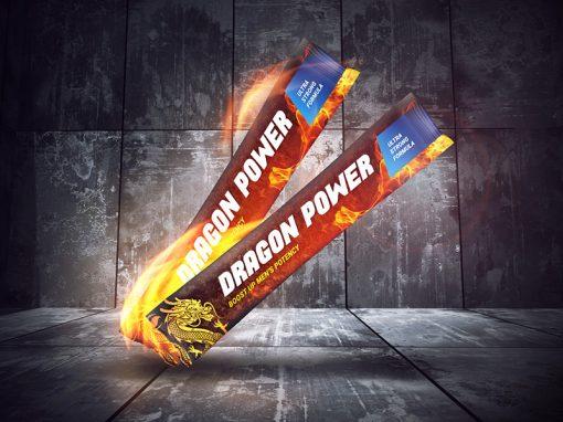 Dragon Power – identyfikacja wizualna