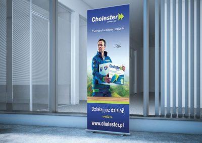 Cholester -projekt rollupu, grafiki social media